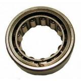 All kinds of faous brand Bearings and block SKF R1559-TV Cylindrical Roller Bearings